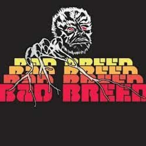 Bad Breed